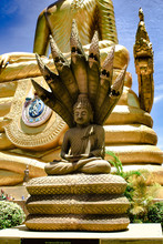 Buddha In Naga Statue At Big Buddha Monument, Phuket Thailand, Rear Garden Area