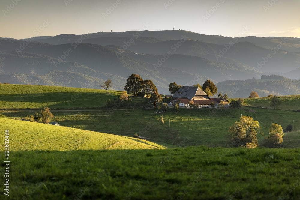 Fototapety, obrazy: Bauernhof bei St.Peter im Schwarzwald