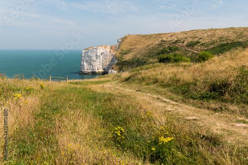 Chalk cliffs near Etretat Pointe de la Courtine on a sunny day in summer Wallpaper Mural