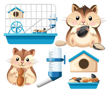 Hamster Icon Collection. Cute ...