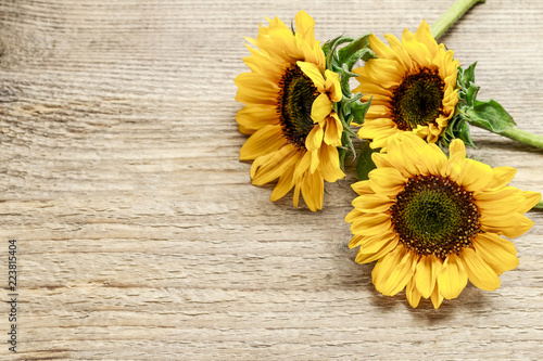 Tuinposter Zonnebloem Sunflowers on wooden background