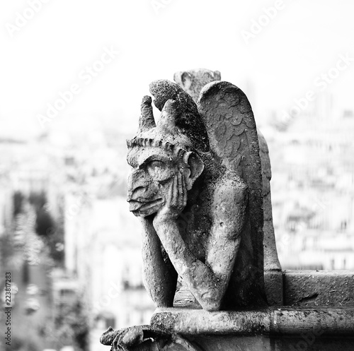 Papiers peints Paris grotesque or Chimaera is a animal figure on the Basilica of Notr
