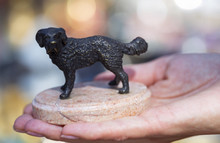 Bronze Sculpture Of A Dog At T...