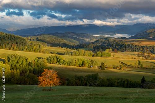 Fotobehang Landschap Fall in Slovakia. Meadows and fields landscape near Povraznik. Autumn color trees at sunrise.