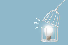 Lamp Bulb In Bird Cage Isolate...