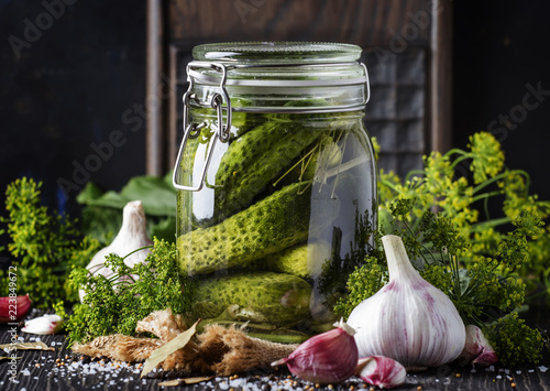Homemade marinated or pickled cucumbers with dill, garlic and spices in big glass jar on rustic brown table, selective focus
