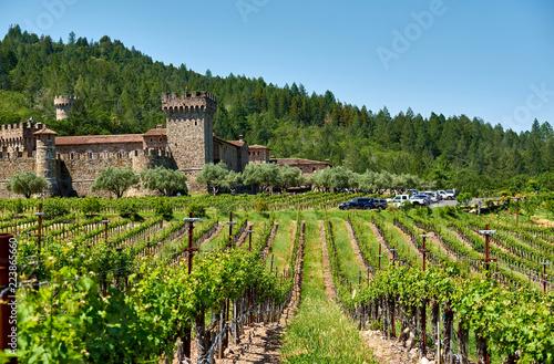 Keuken foto achterwand Verenigde Staten Vineyards with castle in California