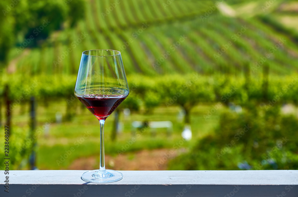 Glass of red wine and vineyards