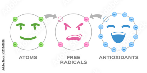 free radical and Antioxidant vector Wallpaper Mural