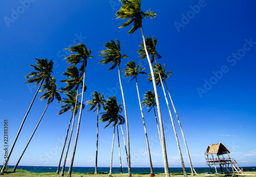 In de dag Tropical strand beautiful tropical sea shore at sunny day.blue sky and turquoise sea water ideal for travel holiday background