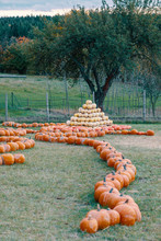 Pyramid From Autumn Harvested ...