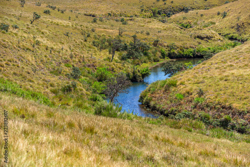 Fotografía  Beautiful landscape meadow from World's End within the Horton Plains National Park in Sri Lanka