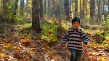 The Boy Runs Through The Autumn Forest. Slow Motion.