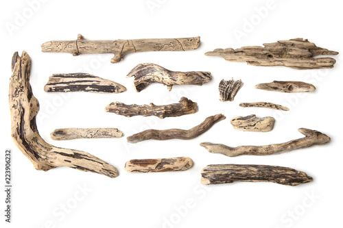 Valokuva  Set of driftwood isolated on white background
