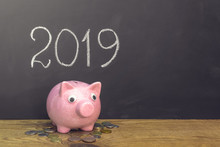 New Year Of Pig 2019