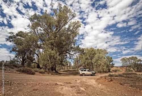Foto op Plexiglas Oceanië Outback Track at Flinders Range - South Australia