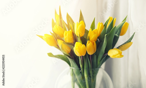 Photo A bouquet of red tulips in a vase on the windowsill. A gift for