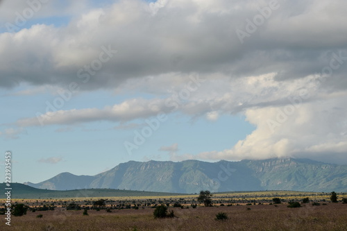 The savannah landscapes of Taita Hills Wildlife Sanctuary, Voi, Kenya