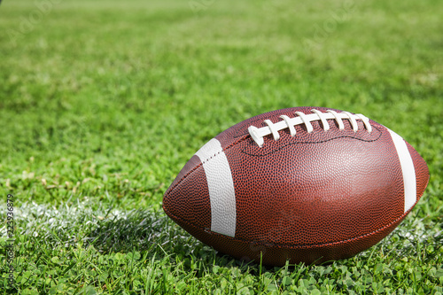 Ball for American football on fresh green field grass