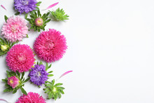 Beautiful Aster Flowers On White Background, Top View. Space For Text