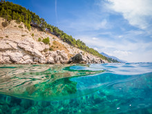 Seagull On The Rock In Adriatic Sea