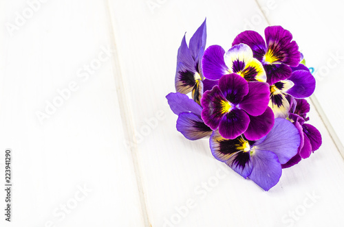 Little bouquet of Viola tricolor