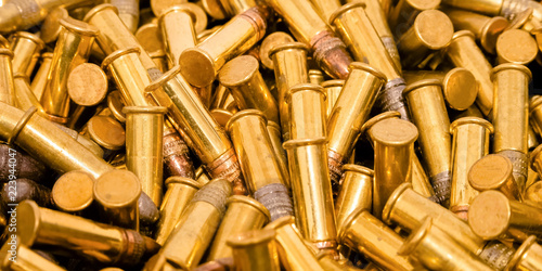 Shiny gold plated ammunition with silver head Canvas Print