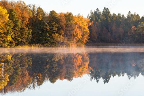 Fototapety, obrazy: Autumn fog on the lake