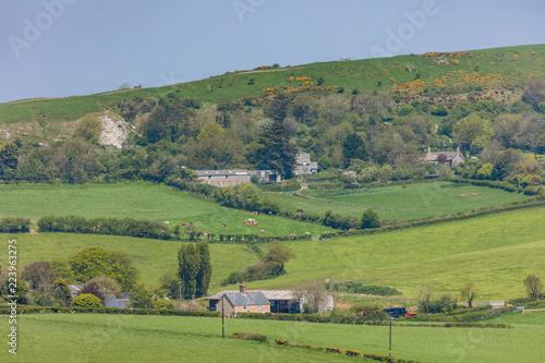 dorset landscape isle of purneck