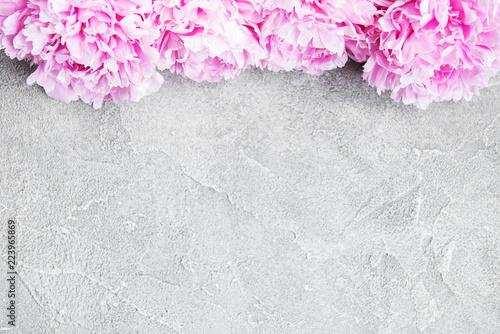Fototapeta beautiful pink  peony flowers obraz na płótnie