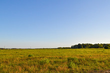 Field And Sky On A Sunny Summer Day. Russia. Moscow Region