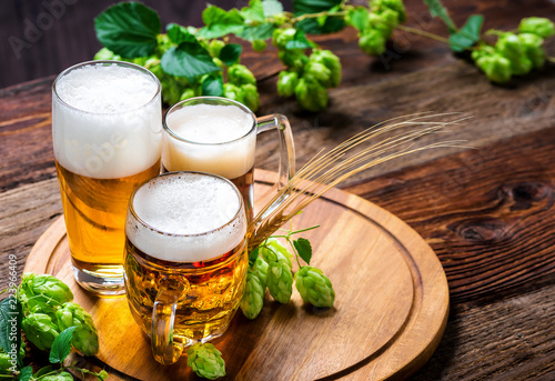Canvas Prints Beer / Cider Bier - Alkohol - Spirituosen - Getränk - Hopfen - Gerste - Stutzen- Seidel - Kanne - Glas