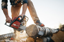 Professional Lumberman Sawing ...