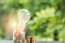 Energy Saving. Stacks Of Coins In Bottle And Tree Growing In Light Bulb And Tree Nature Background. Saving, Natural Energy And Financial