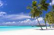 インド洋の美しいサンゴ礁の海