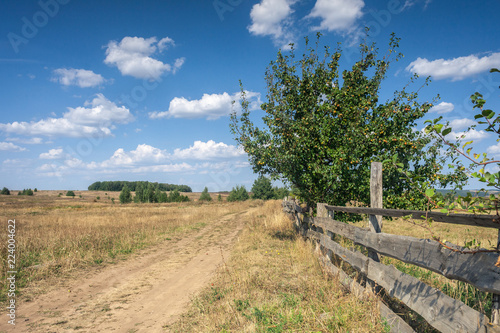 Fotografiet  rural road with wooden fence, sunny day with cloudy sky