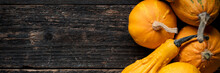 Happy Thanksgiving Banner. Selection Of Various Pumpkins On Dark Wooden Background. Autumn Vegetables And Seasonal Decorations. Autumn Harvest And Holiday Concept.