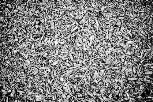 Fényképezés  black and white scobs background