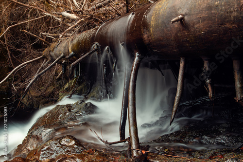 Foto op Aluminium Draken Fallen tree and waterfalls at a mountain forest river in moody autumn light landscape. Hiking on a cold and fresh day. Ilsetal in Ilsenburg, National Park Harz in Germany