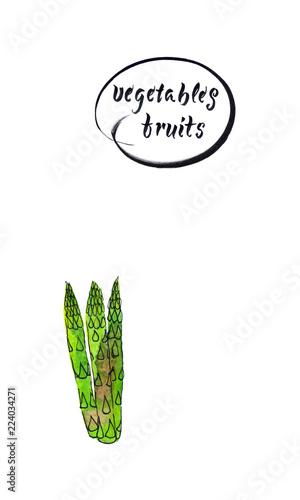 Fotografia  Stalks of fresh green asparagus - hand drawn vector watercolor illustration