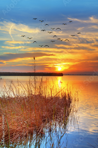 Fotobehang Oranje eclat paisaje vertical de un atardecer sobre el agua del lago