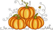 Orange Autumn Pumpkins