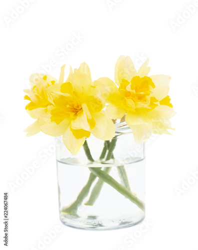 Photographie  Jonquils flowers in glass isolated on white background