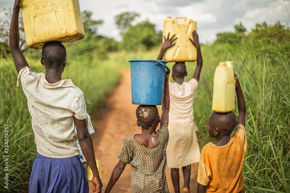 Fototapeta Group of young African kids walking with buckets and jerrycans on their head as they prepare to bring clean water back to their village.