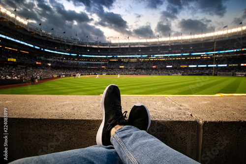 Photo  Person Enjoys Baseball Stadium