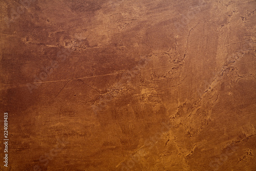 Bronze Canvas Print