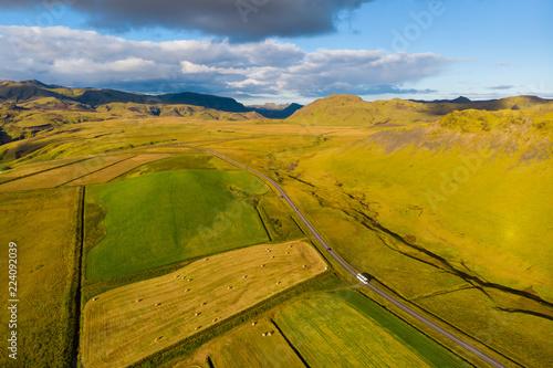 Fotobehang Honing Green landscape