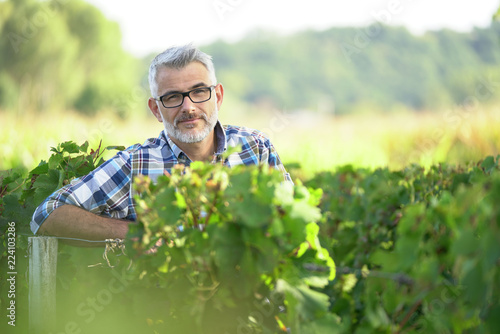 Fotografia  Winemaker standing in vineyard