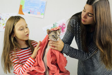 Woman And Child Wipe The Cat After Washing, Mom And Daughter Have A Great Time Together
