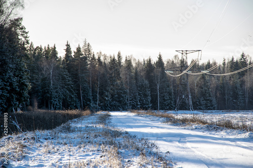 Poster Grijze traf. snowy winter countryside scene with snow and frozen trees